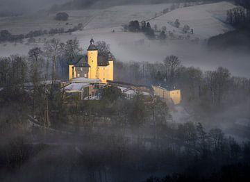 Kasteel Homburg in de winterse mist van Ingo Fischer