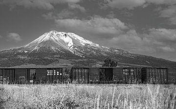 Hete zomer aan de voet van Mount Shasta met spoorwegwagons, Californië / VS van Gerwin Schadl