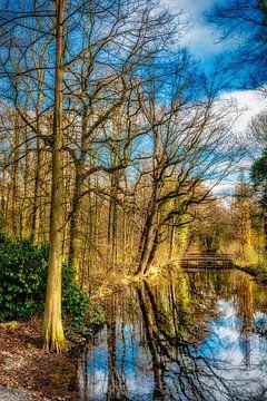 Schoonheid van de natuur weerspiegeling van bomen in water en brug in de herfst van Dieter Walther