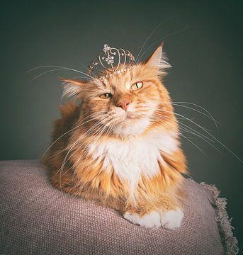 König Ivar mit seiner Krone von mirka koot
