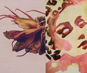 Flora Collage Last Dance van Helia Tayebi Art