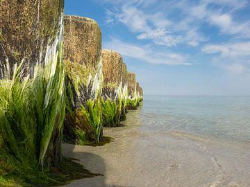 Buhnen an der Ostseeküste von Katrin May