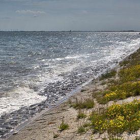 Golven bij de vliegende dijk in Wilhelmshaven van Rolf Pötsch