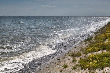 Wellen am Fliegerdeich in Wilhelmshaven von Rolf Pötsch
