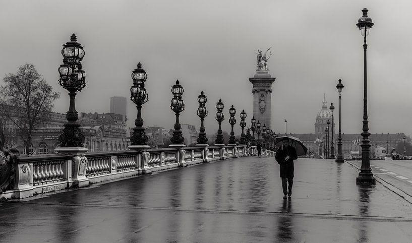Pont Alexandre III in Paris van Nico Geerlings