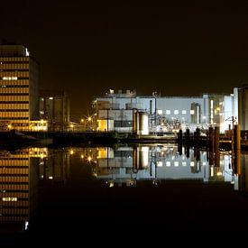 DSM Fabriek in Delft van Fleur Halkema
