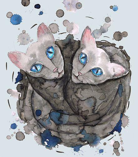 Twee grijze kattenzusjes
