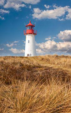 Lighthouse List-West in het natuurgebied Ellenbogen Peninsula, Sylt van Christian Müringer