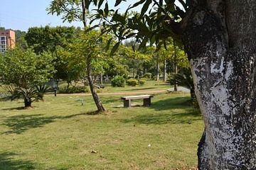 Guangzhou college park von Simone van der Heide