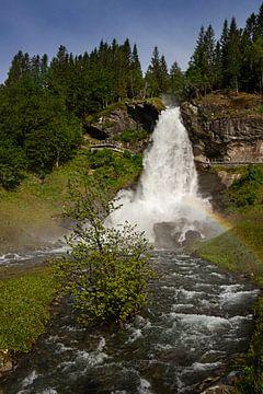 Steindalsfossen, Norwegen von Adelheid Smitt