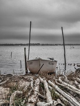 Barque blanche van Catherine Fortin