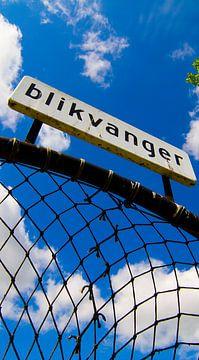 Blikvanger van Mark Nieuwenhuizen