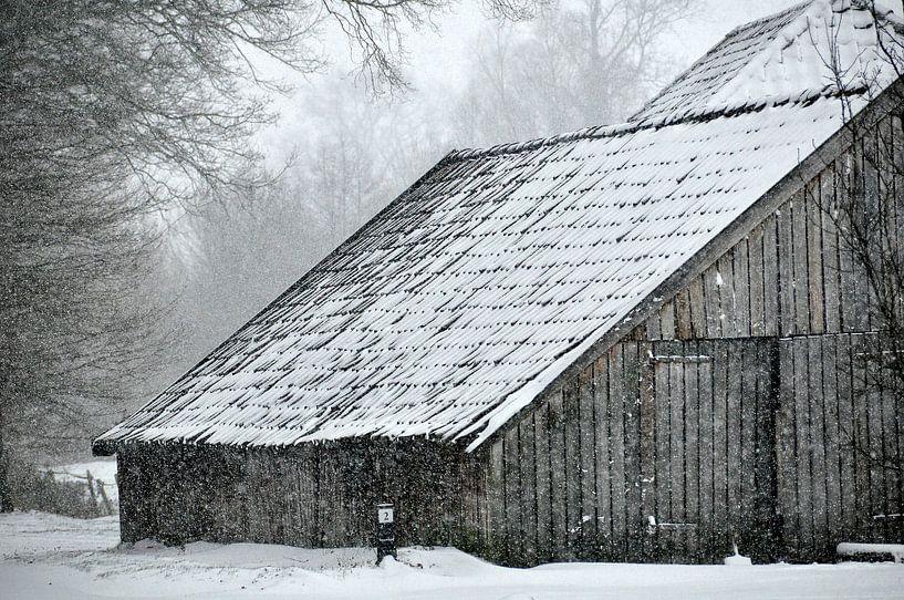 Winter in de Achterhoek van Arno Wolsink