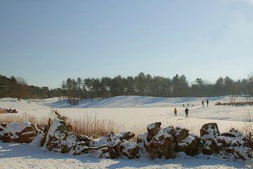 Schlittschuhlaufen auf dem Eis in der Bergse Heide von Sabina Meerman