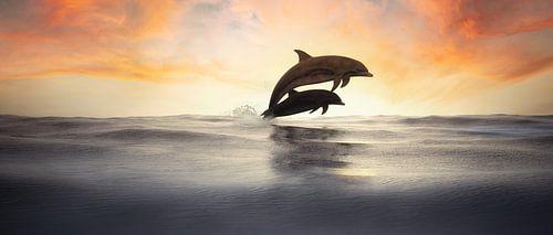 Springende Delphine in Silhouette