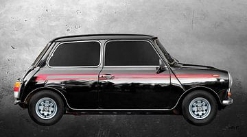 Mini 1000 Super von aRi F. Huber
