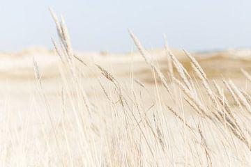 Strand en Duinen  von Chantal Cornet