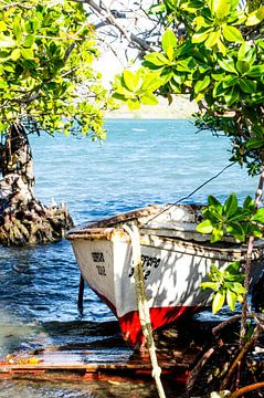 Fischerboot Curacao von Joke Van Eeghem