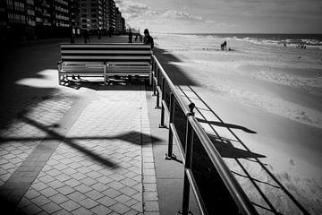 relaxen op de Middelkerkse zeedijk von Rene  den Engelsman