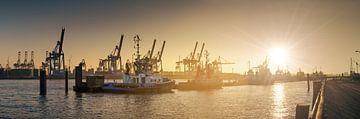 Zonsondergang aan de Elbe promenade Hamburg/Altona van Jonas Weinitschke