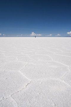 Zoutvlakte van Uyuni van Erwin Blekkenhorst