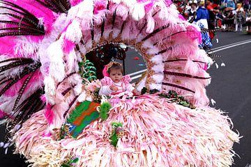 Carnaval von Henk Langerak