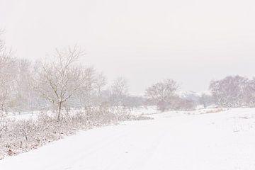 Winters landschap von Carla Eekels