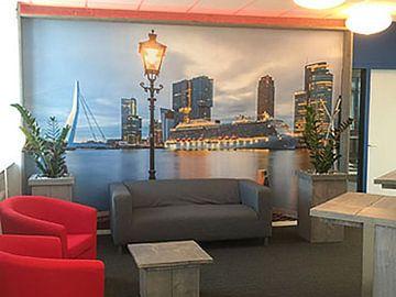 Klantfoto: De skyline van Rotterdam met cruiseschip Royal Princess van MS Fotografie | Marc van der Stelt