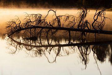 Mystischer Sonnenaufgang von Willemke de Bruin