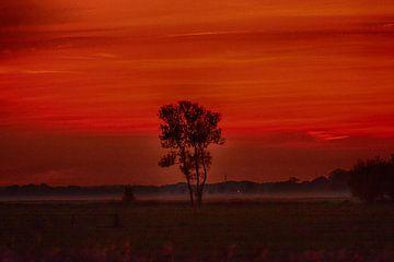 Rouge du soir à l'automne
