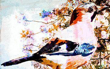 Kleurrijke gaai von Nannie van der Wal