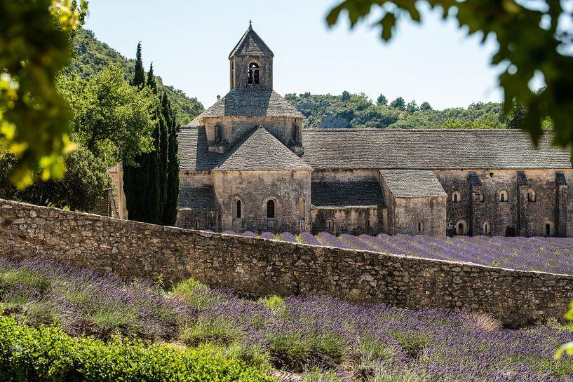 Abbaye de Senanque van Henk Verheyen