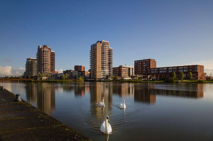 Zoetermeer Oosterheem Skyline en Zwanen van Ricardo Bouman | Fotografie