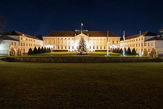 Bellevue Paleis met kerstboom