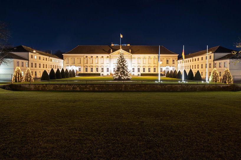 Bellevue Paleis met kerstboom van Frank Herrmann