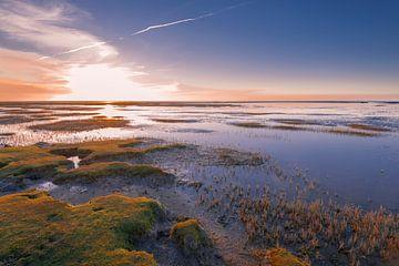 Sonnenuntergangs-Wattebausch von Richard Gilissen