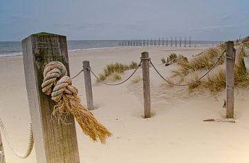 Het strand bij Kaap Noord, Texel van Wim van der Geest