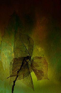 Nature morte des feuilles sur Ellen Driesse