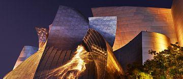 Walt Disney Concertzaal - Licht Danser van Keith Wilson Photography