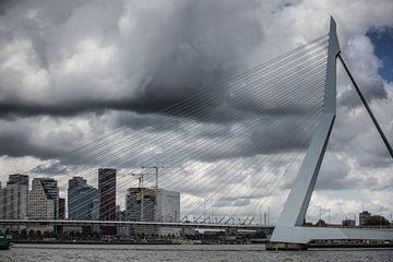 Ein Besuch in Rotterdam von denk web