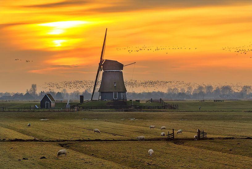 Dutch winter sunset van Costas Ganasos