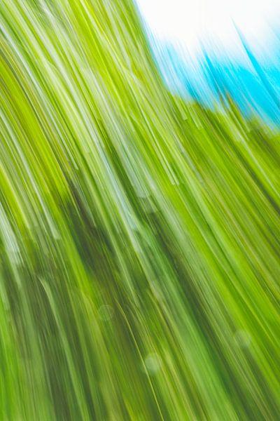 Blauer Himmel von Jan Peter Jansen