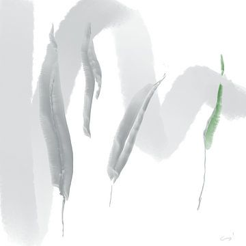 Op zoek naar groen van Csilla Albert