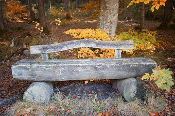alte Holzbank am herbstlichen Waldrand von Susanne Bauernfeind