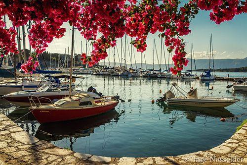 Romantic, mediterranean harbour with bougainville