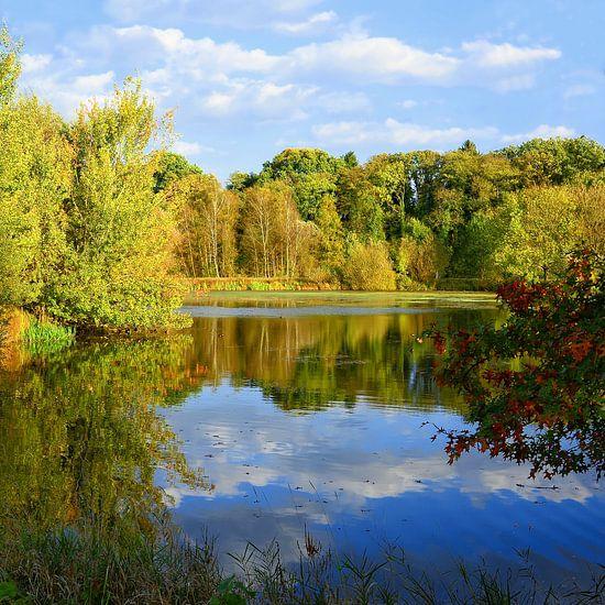Little lake with autumn foliage van Gisela Scheffbuch