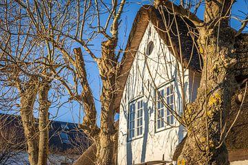 Reetdachhaus in Keitum, Sylt von Christian Müringer