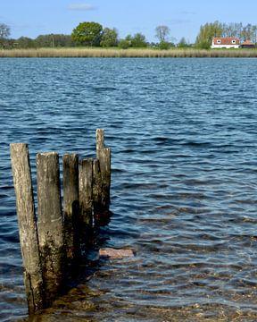 Paaltjes in het water van Greta Lipman