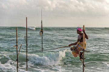 Pole pêcheur au Sri Lanka sur Richard van der Woude