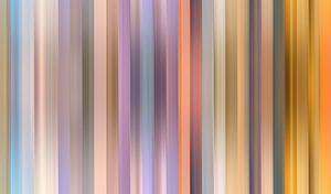 Kleurenpalet van de Zonsopkomst in Nederland